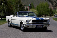 GT350 Shelby